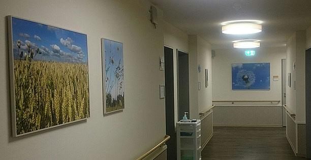 Ausstellungs-und-Montageservice_Himmelsfreuden
